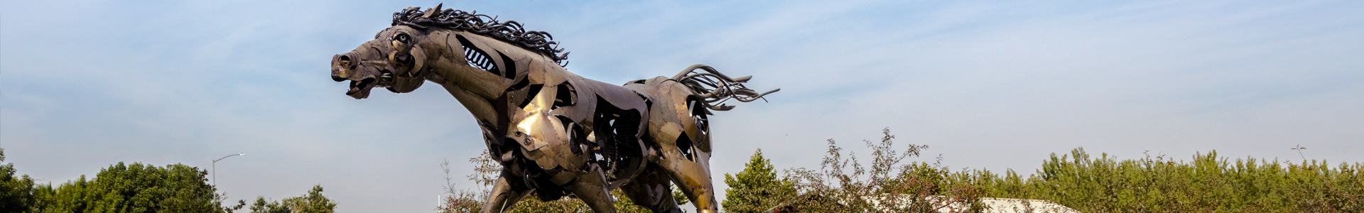 An image of the Drycreek Trailhead horse statue