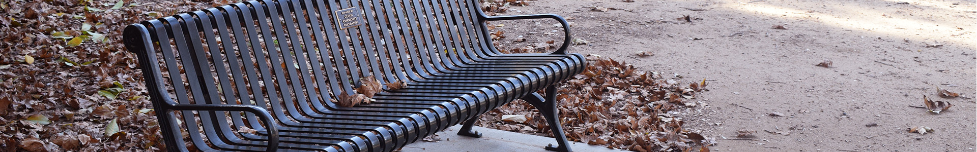 An image of a park bench
